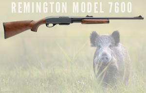 Buy or Bust – Remington Model 7600