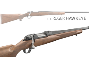 Buy or Bust – Ruger Hawkeye