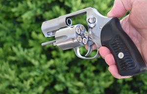 Buy or Bust – Ruger SP101