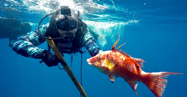 "Spearfishing and Underwater Adventure with Jon Brunson of ""Spear Life"""