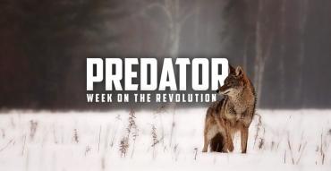 The Revolution - 11/16/2017