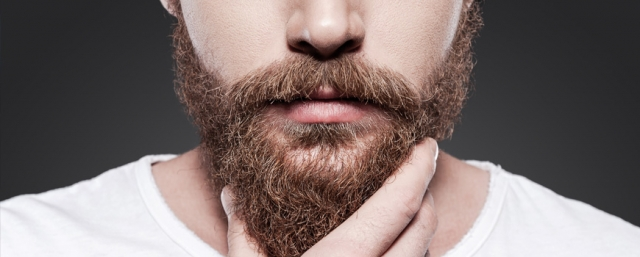 It's Nearly Fall...Do You Know Where Your Beard Is?