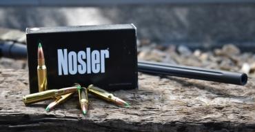 Buy or Bust – Nosler Ballistic Tip Hunting Bullet