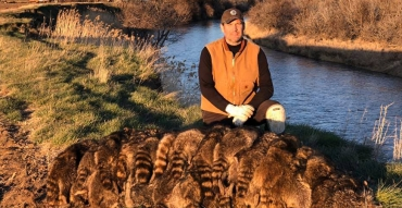 Trapping for Coyotes and Racoons with North American Trapper Alan Probst