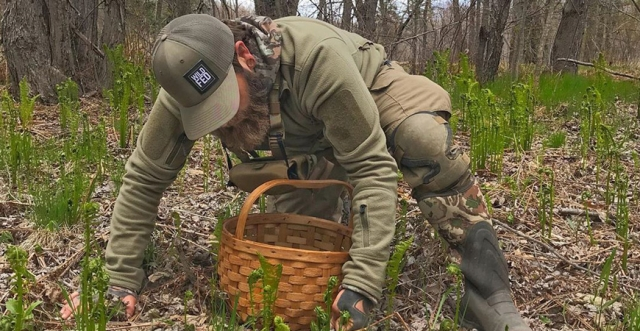 Spring Foraging 101 with Daniel Vitalis of WildFed