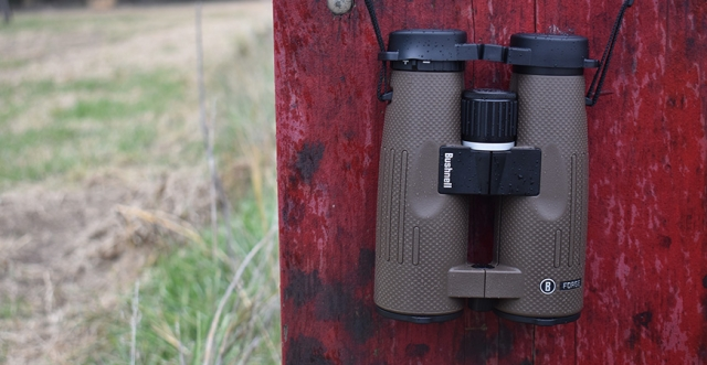 Buy or Bust – Bushnell Forge Binoculars